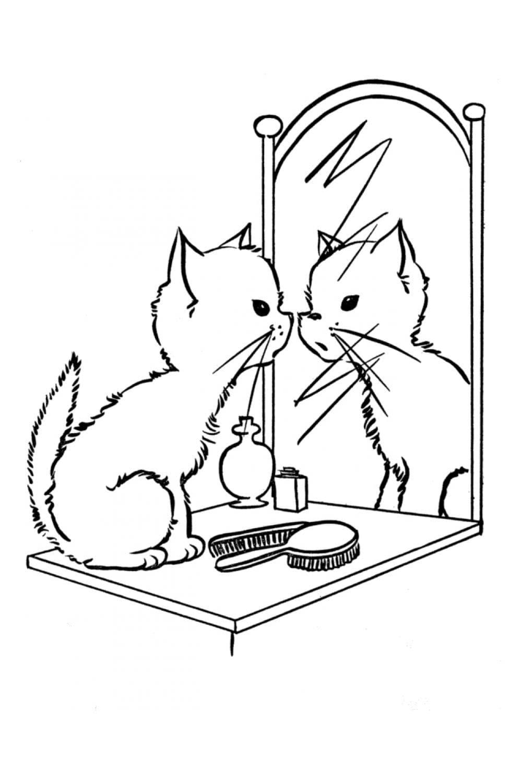 Раскраска Кот смотрится в зеркало