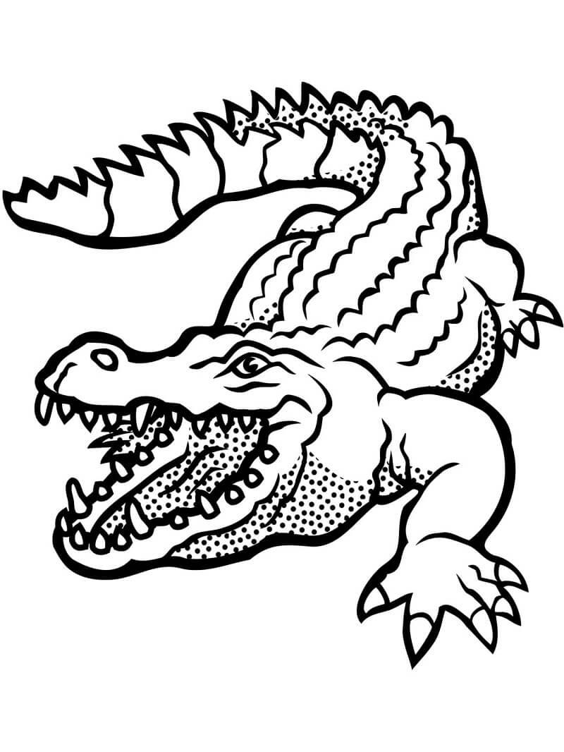 Раскраски Рептилии