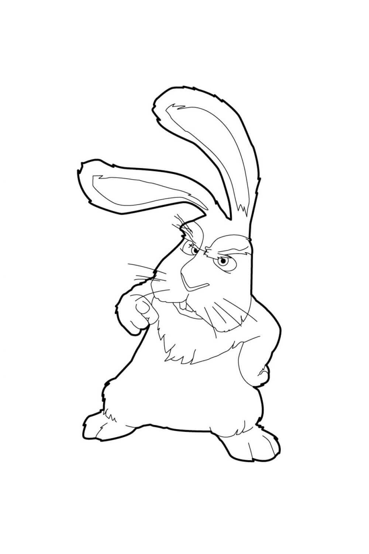 Раскраска Кролик Джек