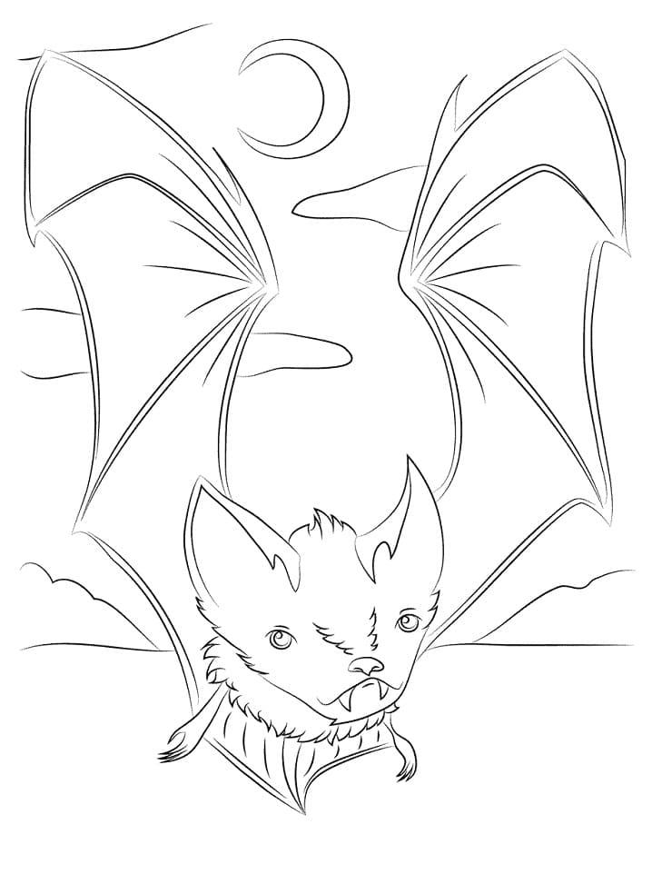 Раскраска Летучая мышь милая 2