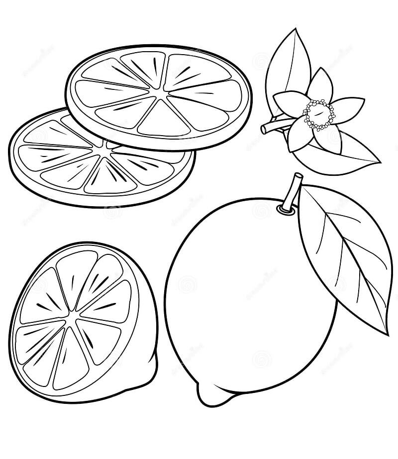 Раскраска ломтик лимона 1