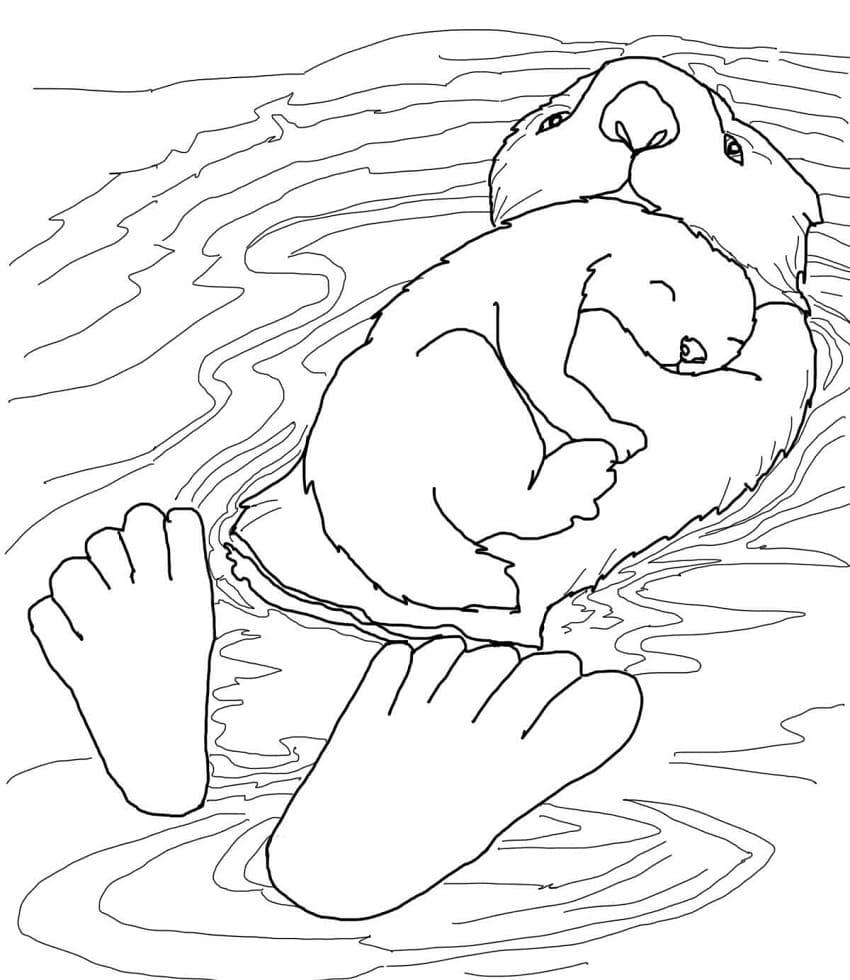 Раскраска мать и детеныш выдры 2
