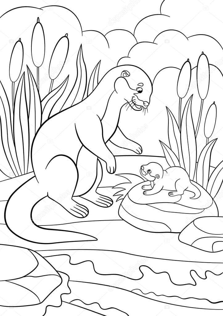 Раскраска мать и детеныш выдры