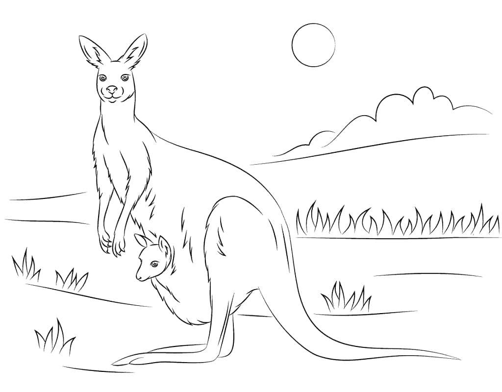 Раскраска мать и ребенок кенгуру 1