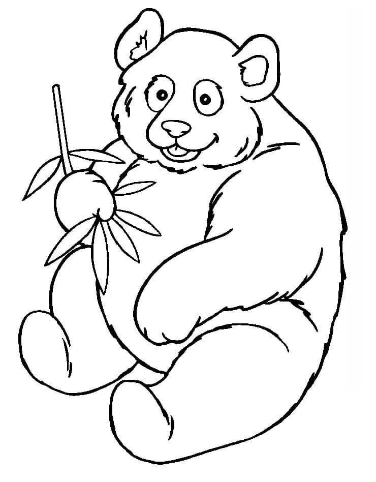 Раскраска Медведь панда 4