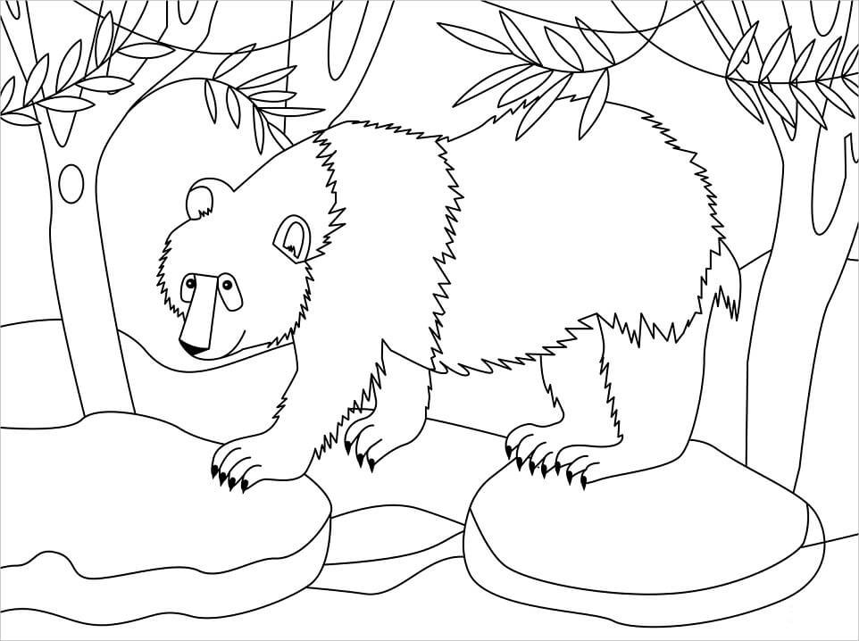 Раскраска Медведь панда 5
