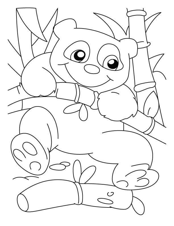 Раскраска милая панда 3