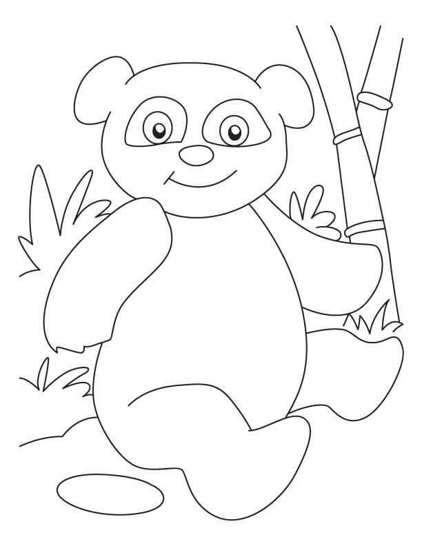 Раскраска милая панда 4
