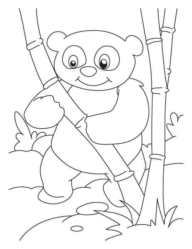 Раскраска милая панда 5