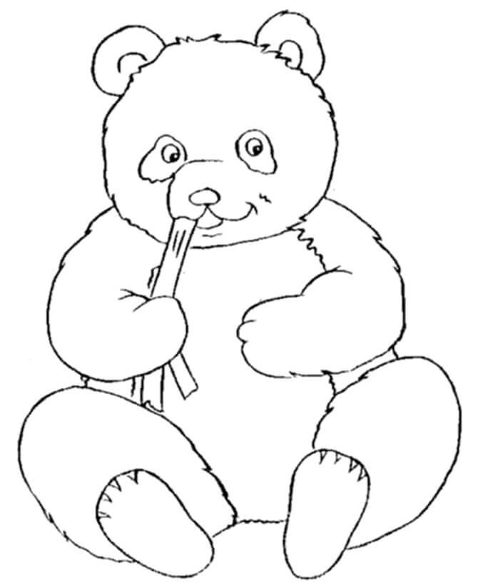 Раскраска милая панда 6
