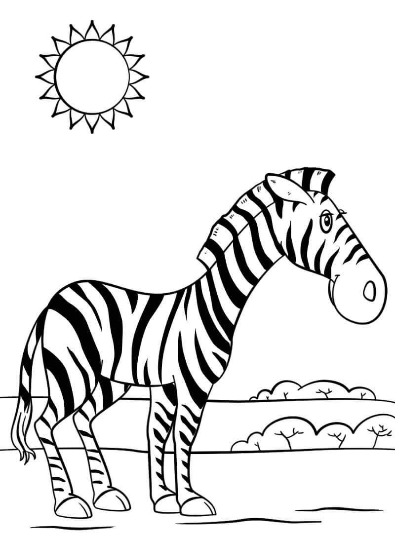 Раскраска милая зебра 1