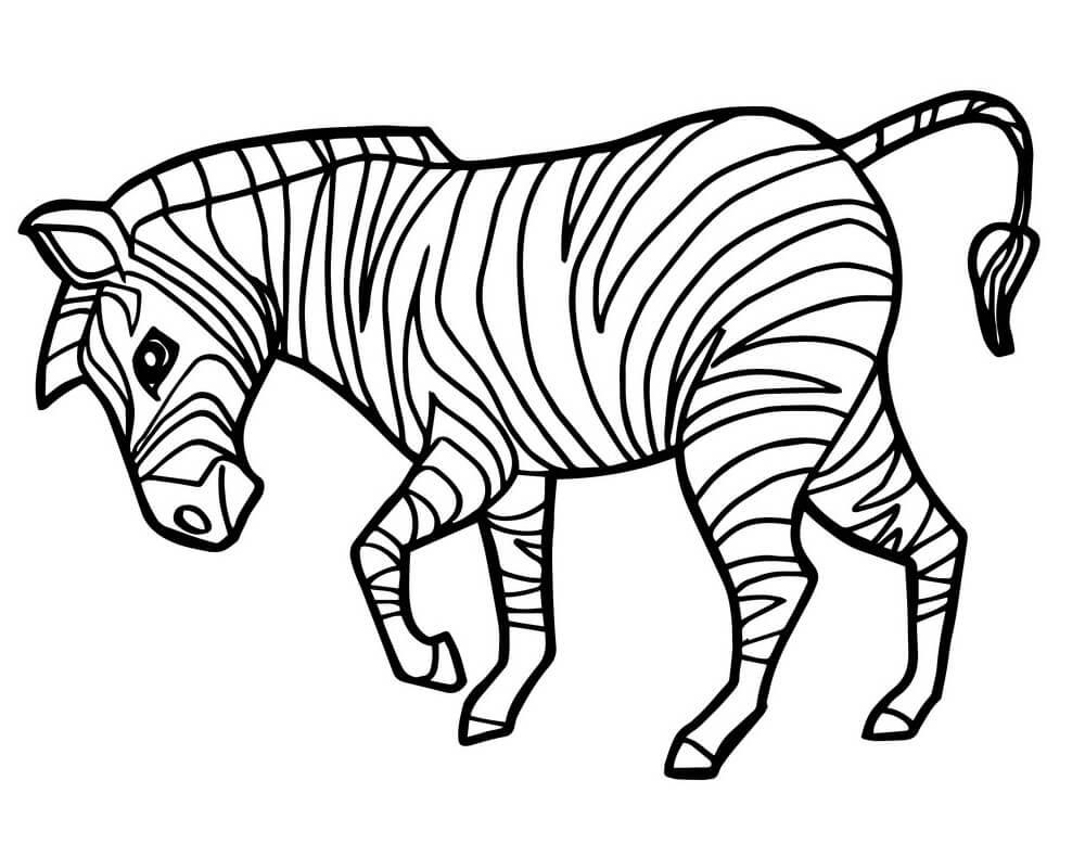 Раскраска милая зебра 5