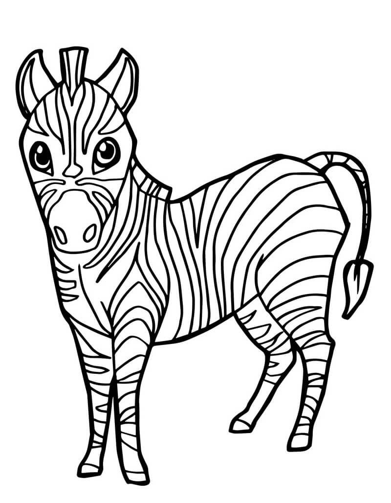 Раскраска милая зебра 6