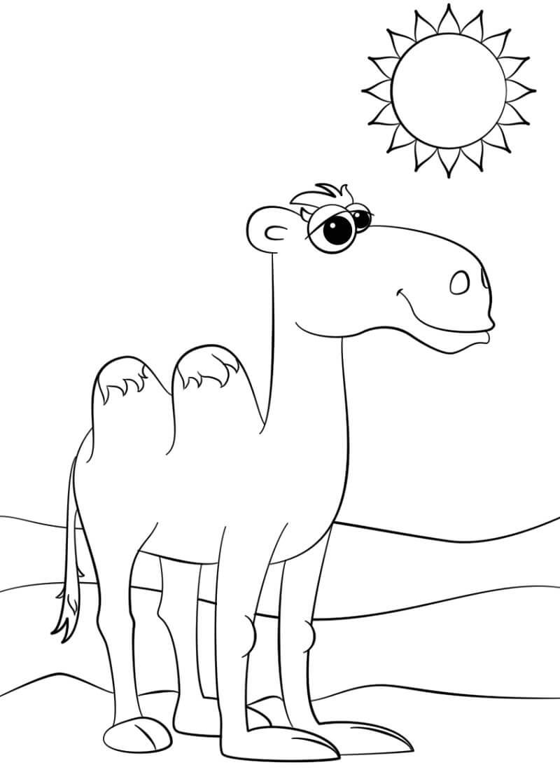 Раскраска милый верблюд 2