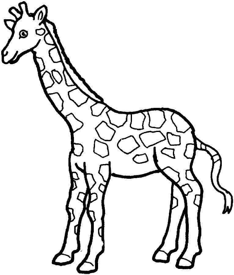 Раскраска милый жираф 5