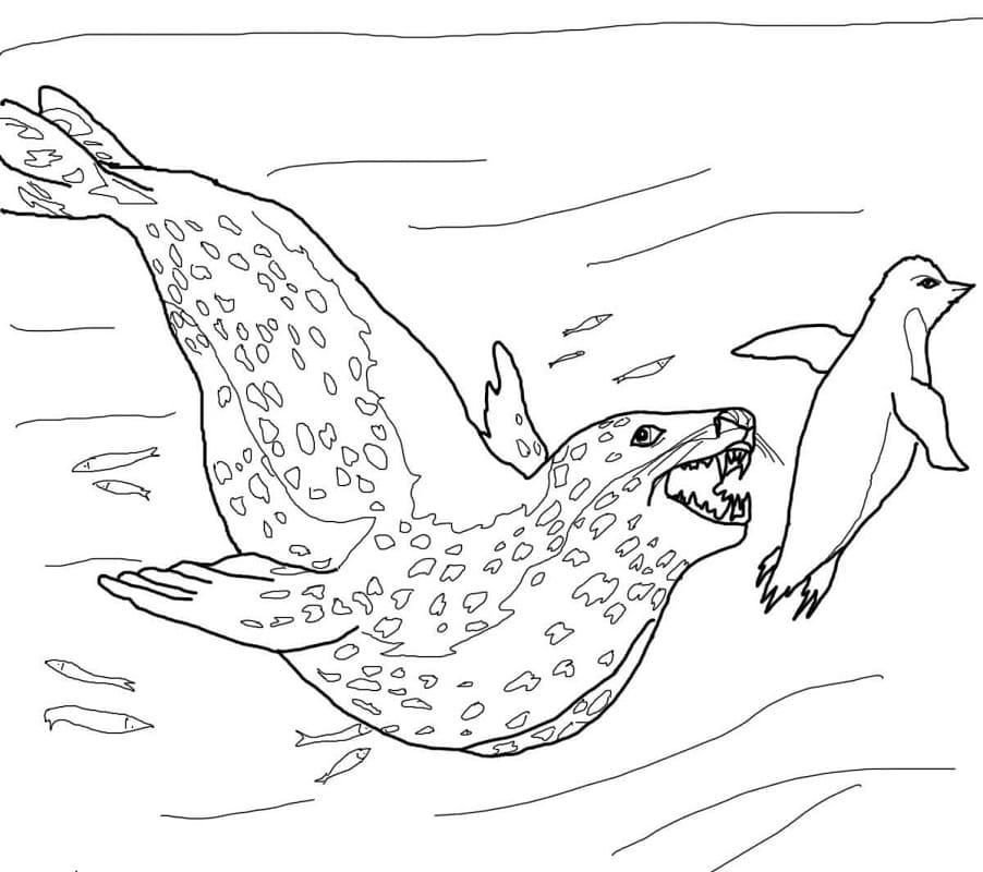 Раскраска Морской леопард гонится за пингвином