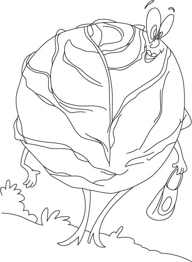 Раскраска мультфильм Капуста 4