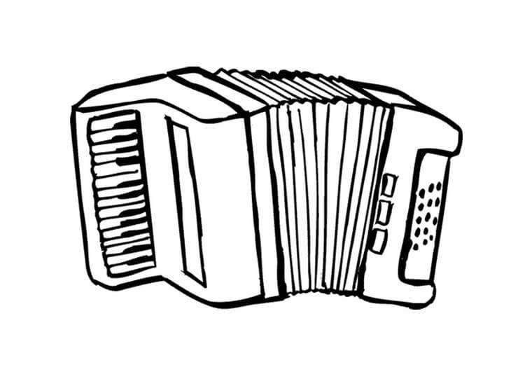 Раскраска нормальный аккордеон