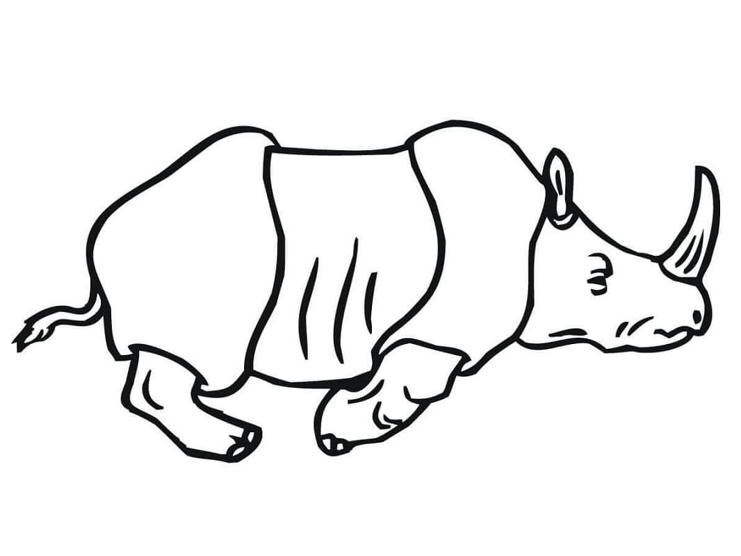 Раскраска носорог бегущий