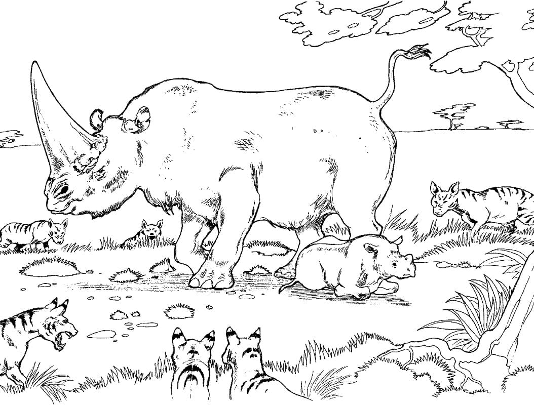 Раскраска носорога 2
