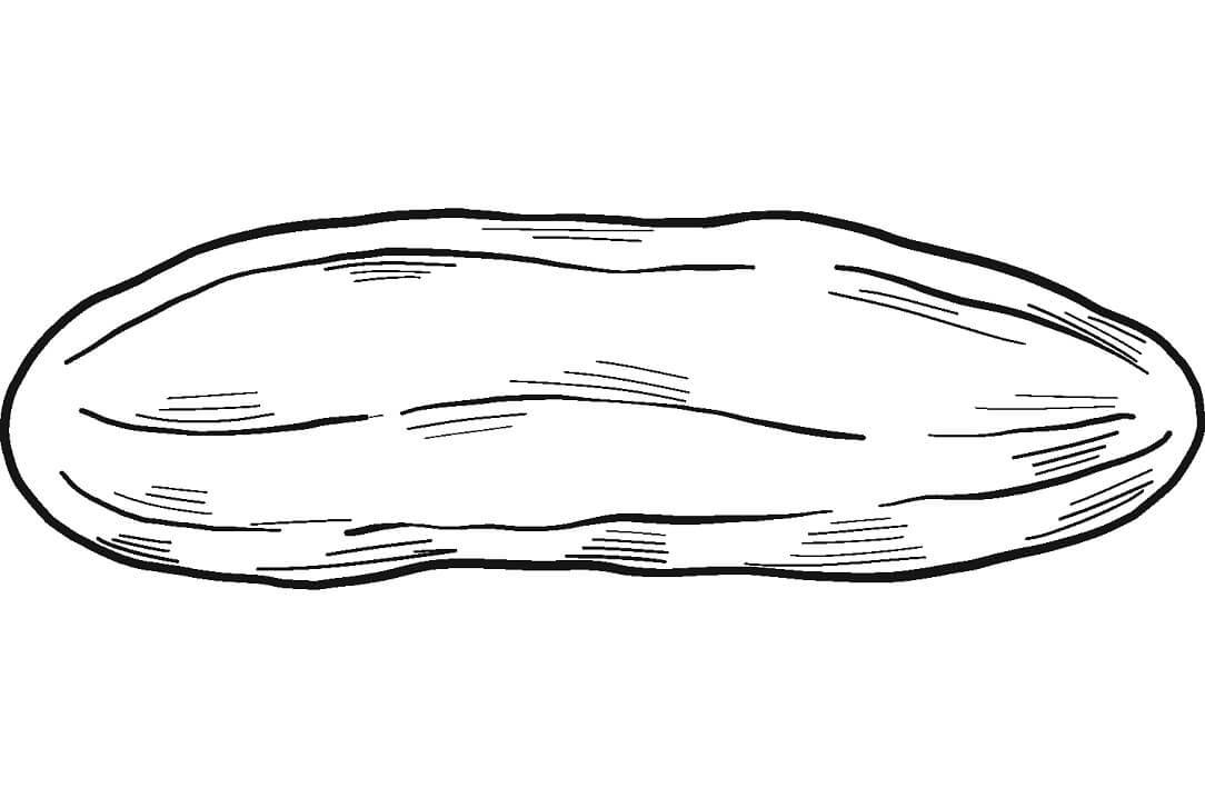 Раскраска Огурец 4