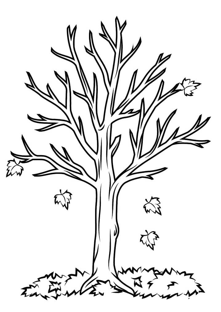 Раскраска Осенние листья 12