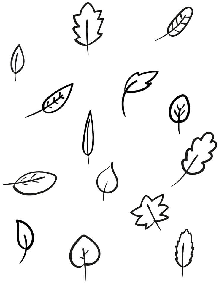 Раскраска Осенние листья 16