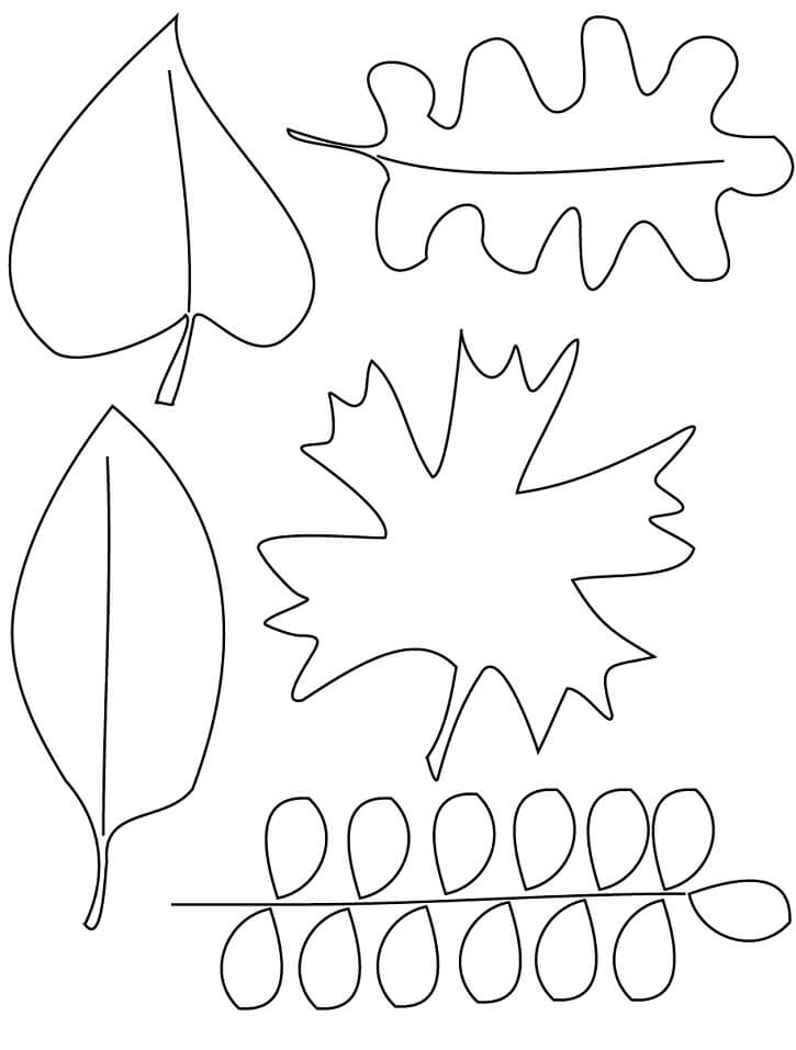 Раскраска Осенние листья 2