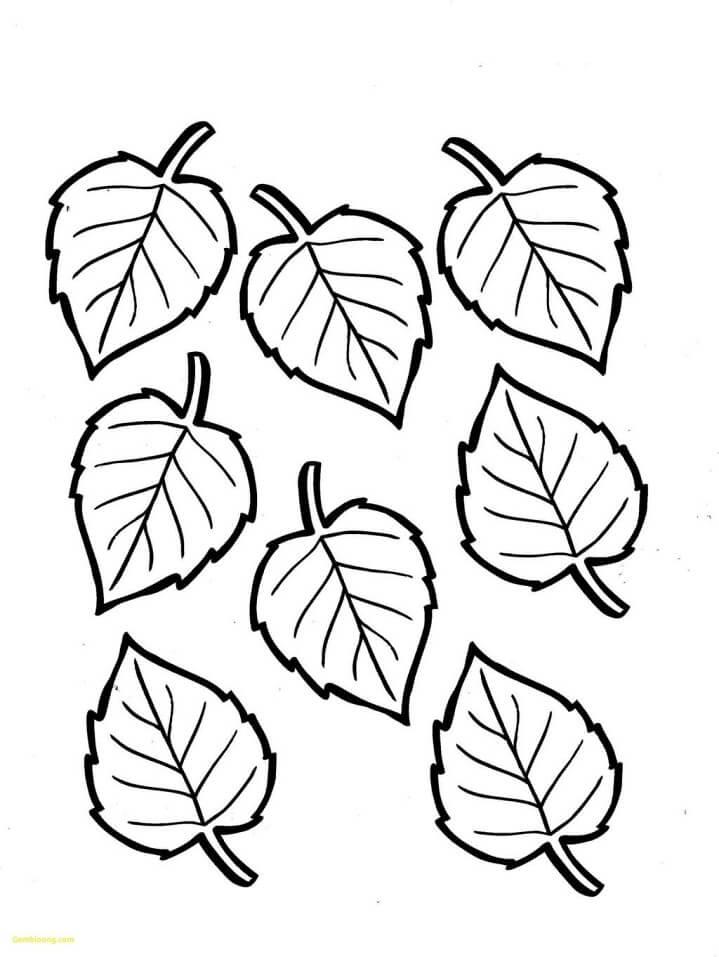 Раскраска Осенние листья 9