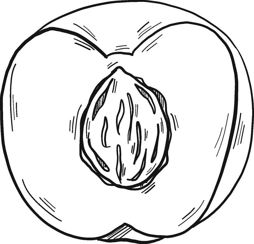 Раскраска Персик 13