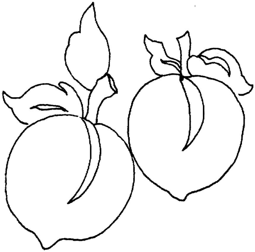 Раскраска Персики 2