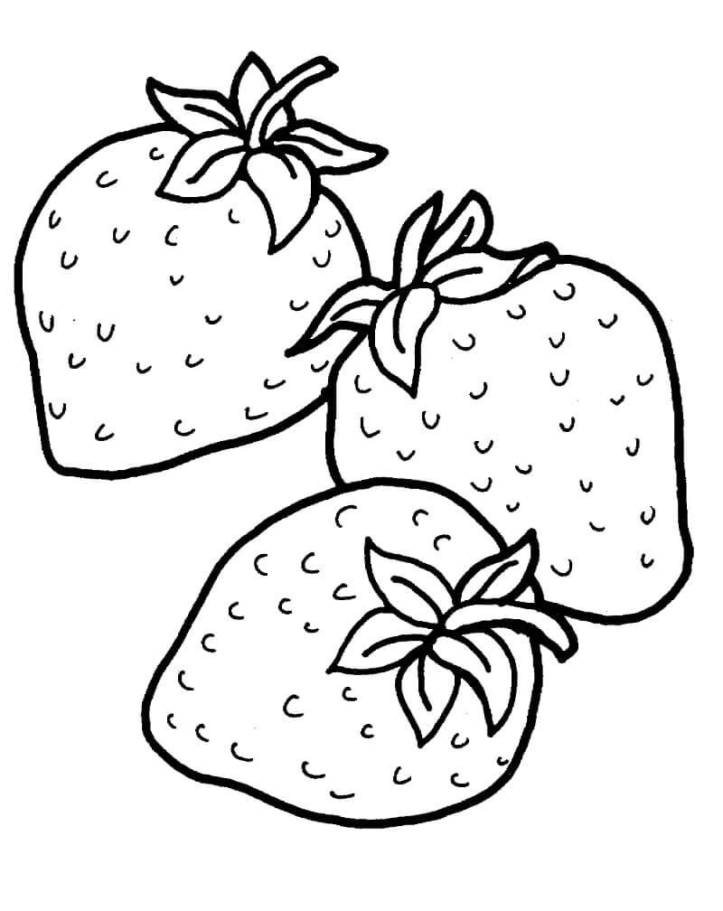 Раскраска плоды клубники 1