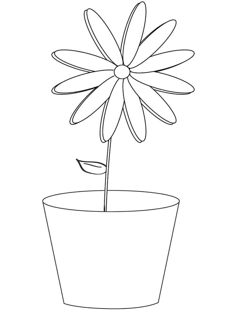 Раскраска простая ромашка 1