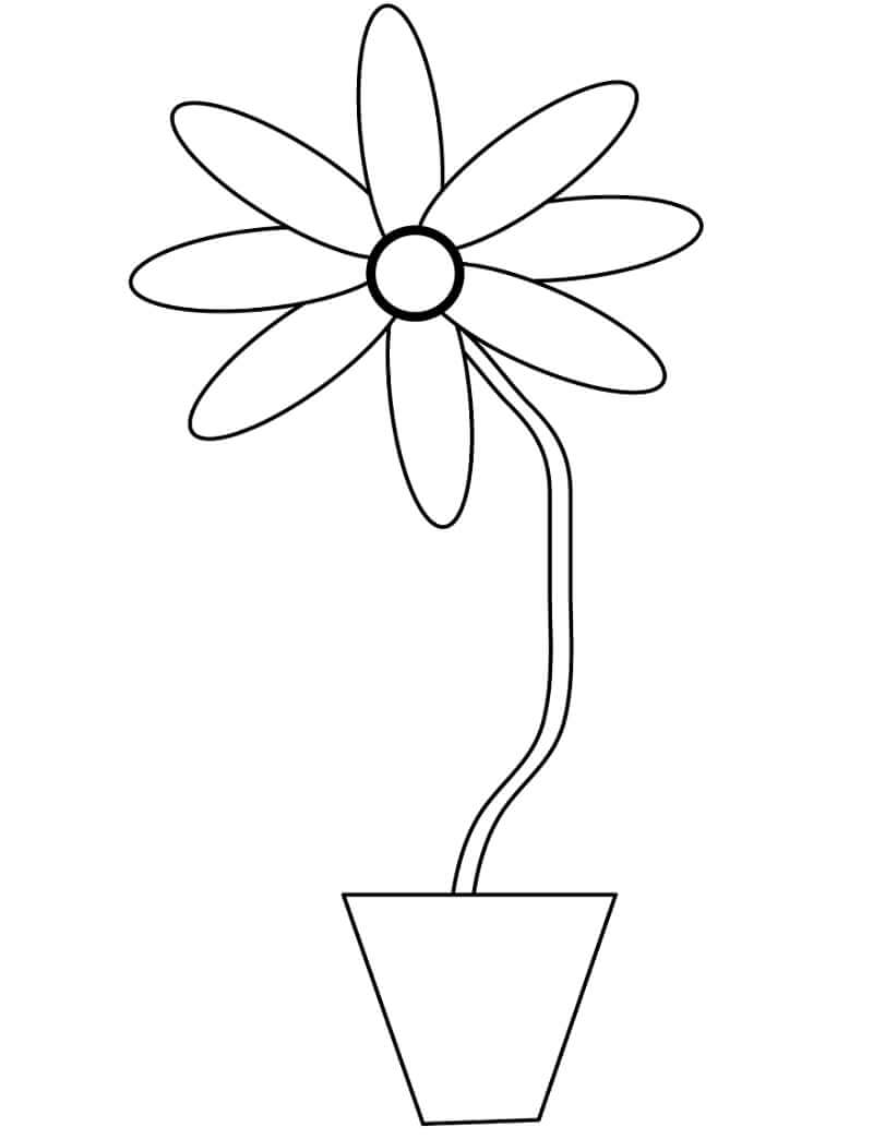 Раскраска простая ромашка 2