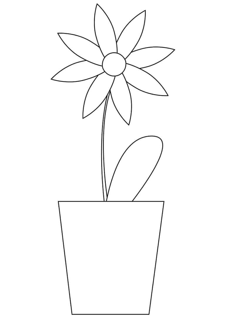 Раскраска простая ромашка 3