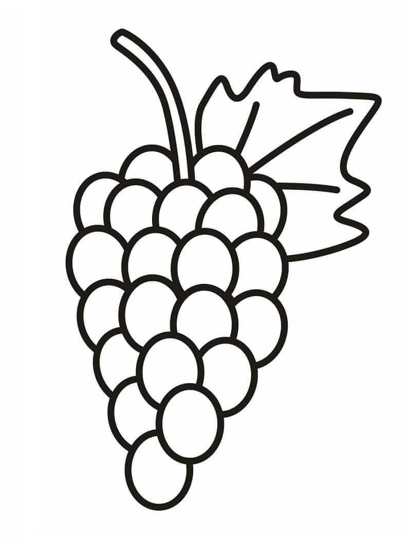 Раскраска простой виноград 2