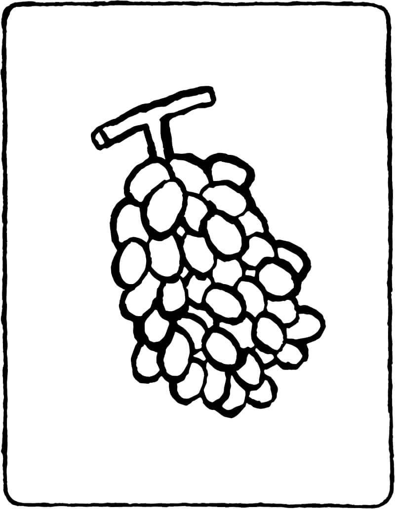 Раскраска простой виноград