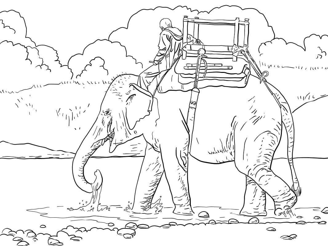 Раскраска слон 1