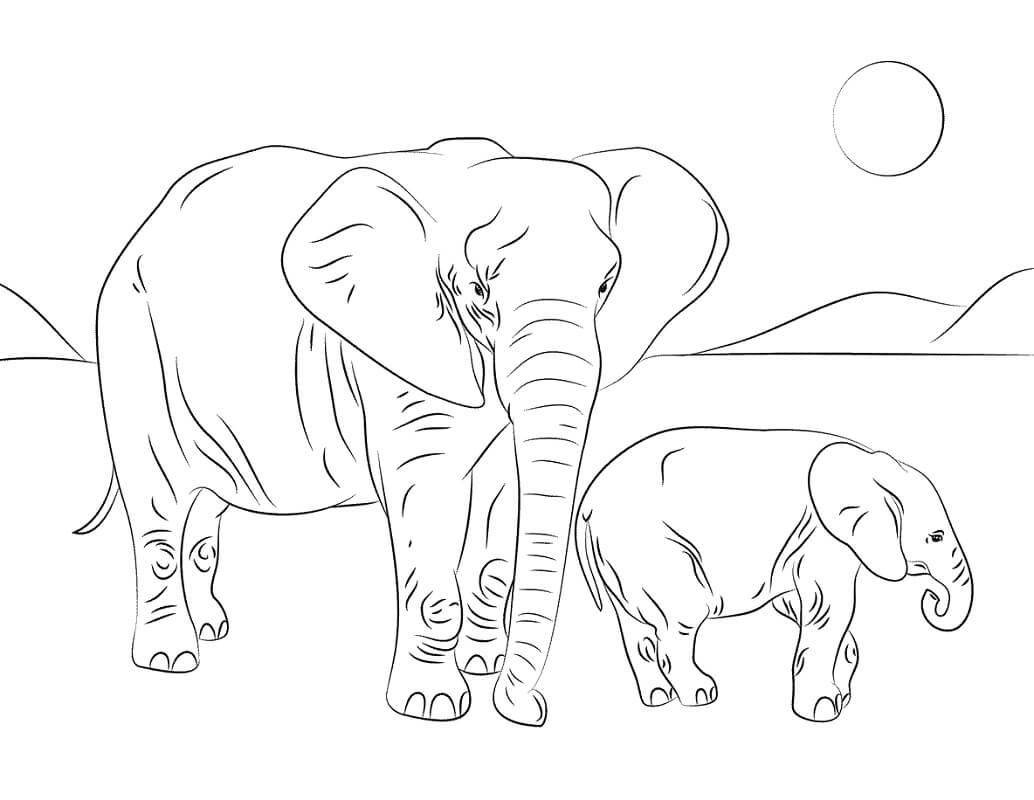 Раскраска слоны 1