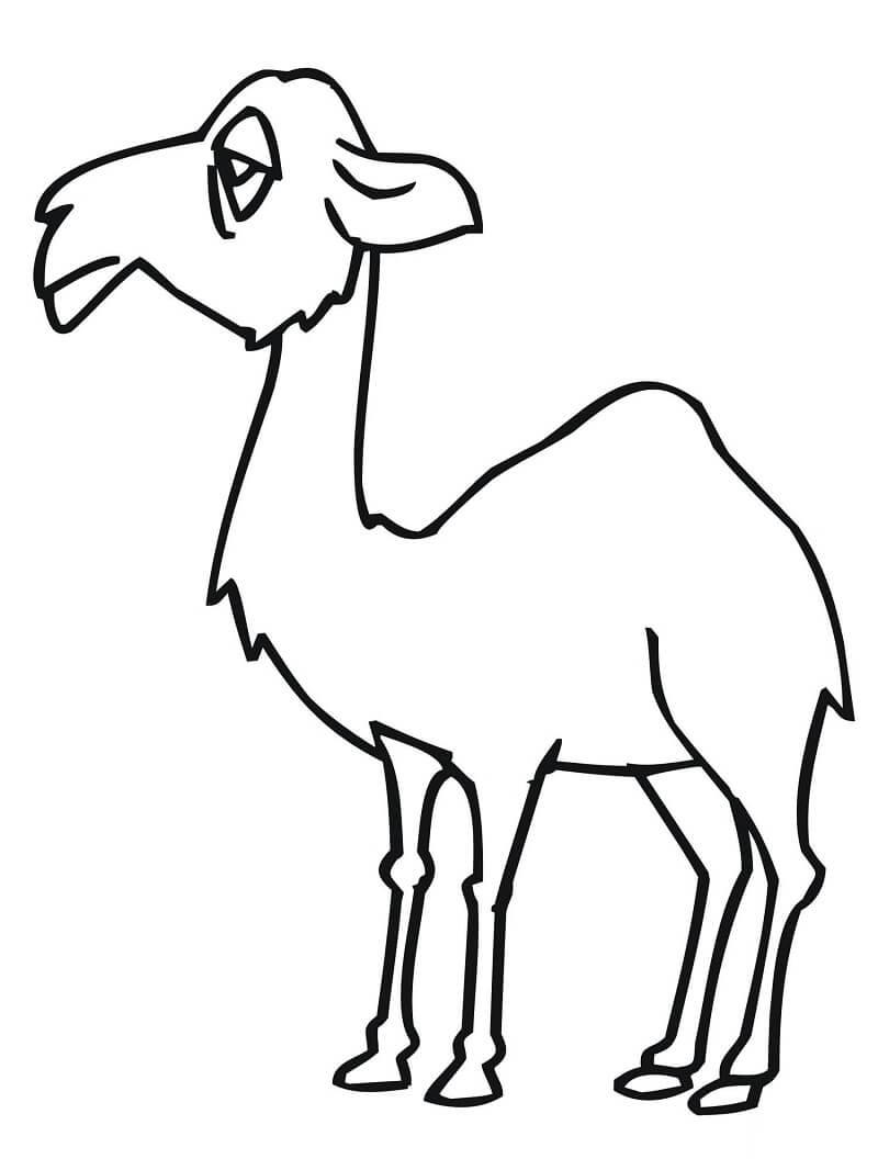 Раскраска смешной верблюд 2