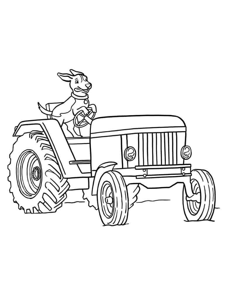 Раскраска собака и трактор