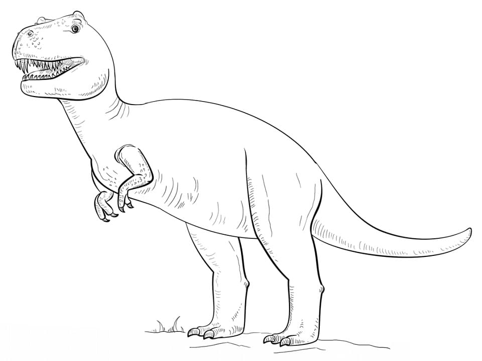 Раскраска Раскраски Тираннозавр