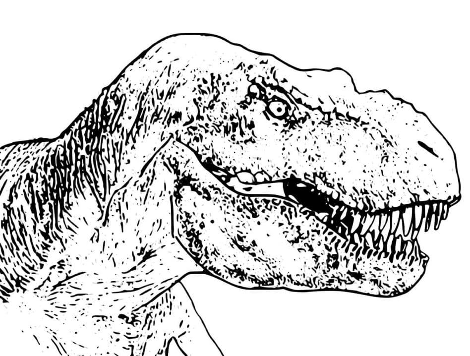 Раскраска Тираннозавр 4