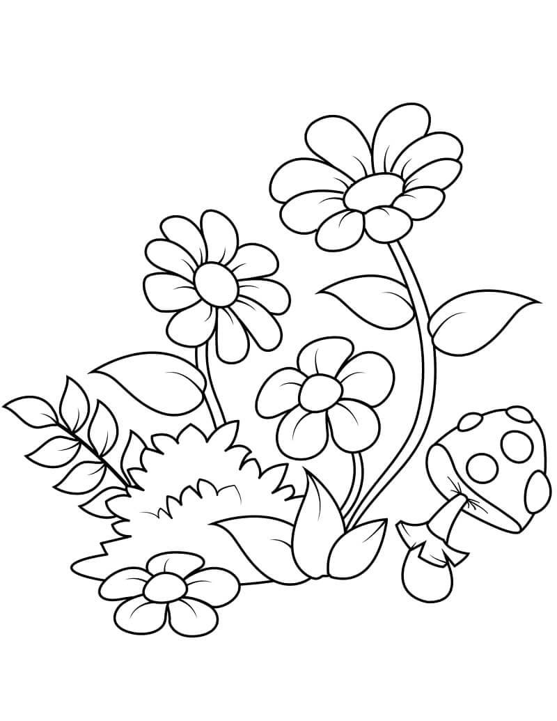 Раскраска цветы ромашки 5