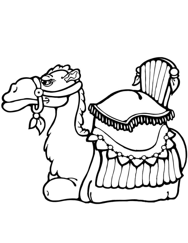 Раскраска верблюд 5