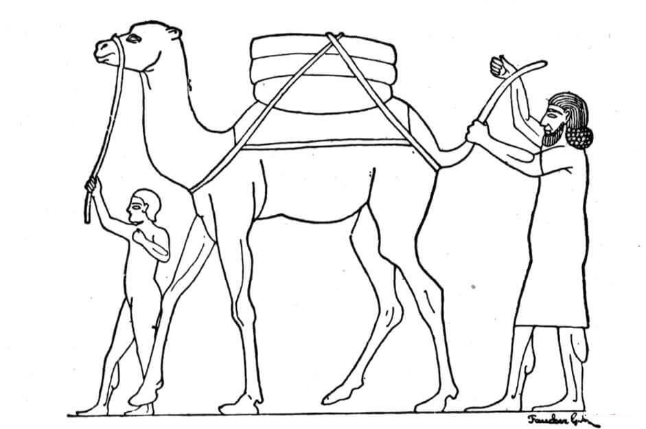 Раскраска Верблюд в Древнем Египте