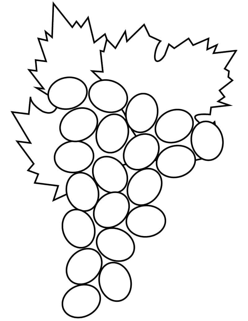Раскраска виноград 2