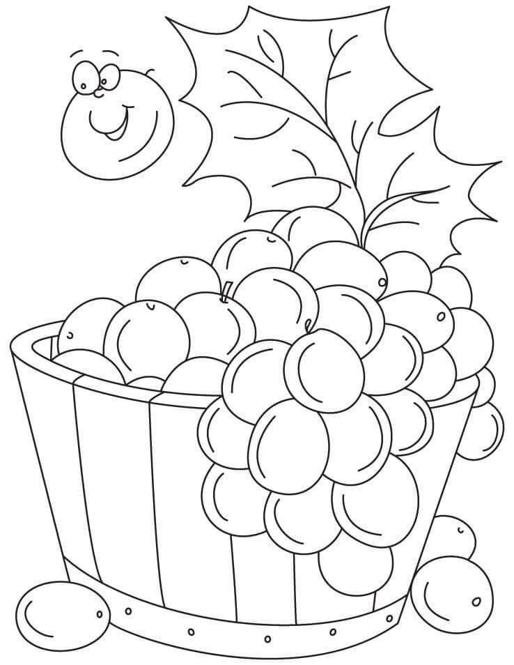 Раскраска виноградное ведро