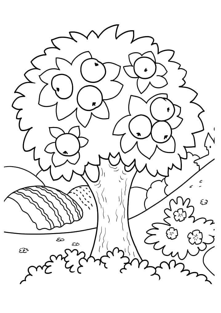Раскраска яблоня 1