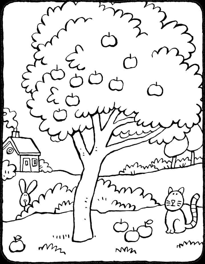 Раскраска яблоня 4
